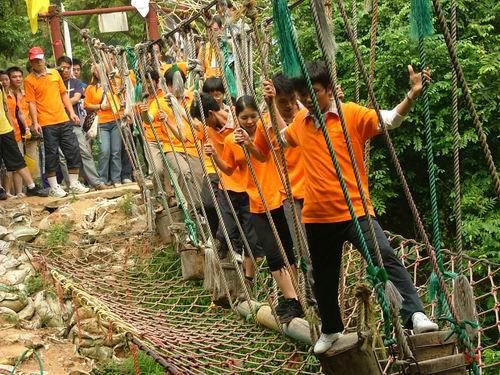 拓展项目木桩桥